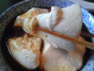 京都豆水桜10.jpg