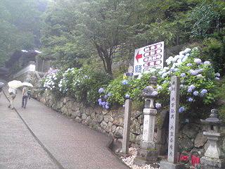 奈良長谷寺11.jpg