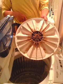 洗濯機掃除3.jpg